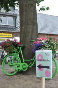 Gasthof-Dahms_Sommerfrische_Gruenes-Fahrrad